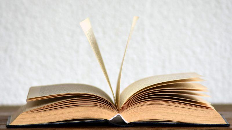 Aloite vaatii poistamaan naisvihamielisen sanakirjamääritelmän ja tekemään siitä inklusiivisen