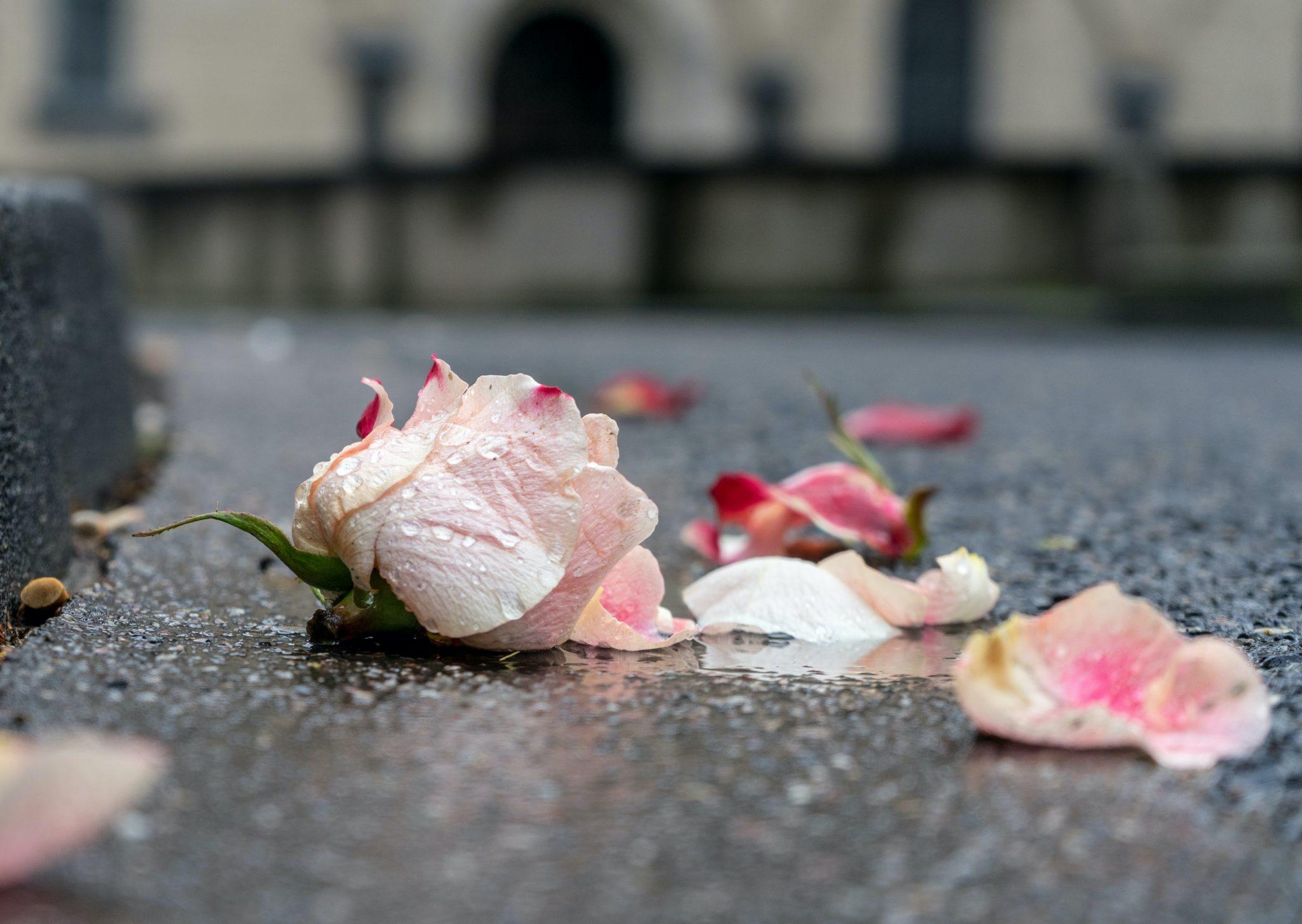 Poliisi ja media väärinsukupuolittivat henkirikoksen uhrin – ihmisoikeusjärjestöt vaativat toimenpiteitä